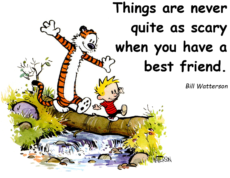 bill-waterson-friend-quote1