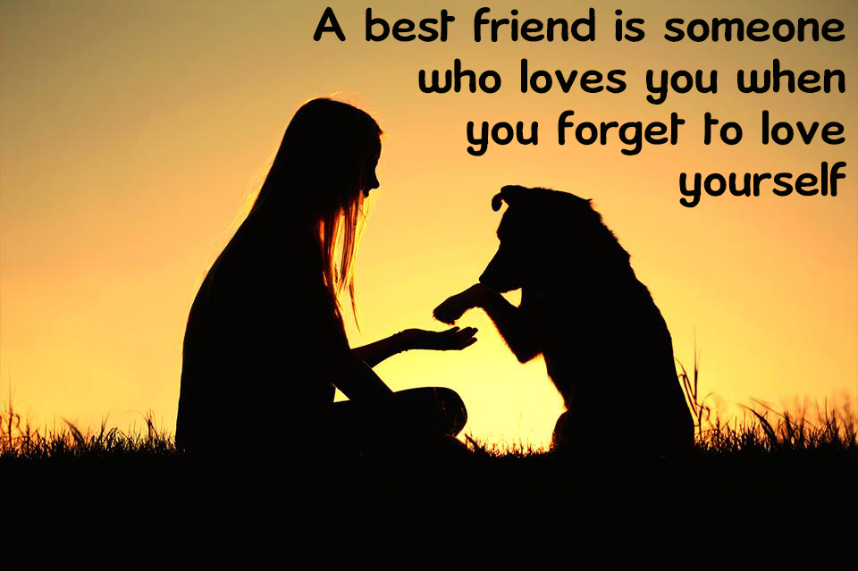 dog-bestfriend
